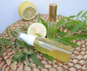 Zitronen Deo (8)