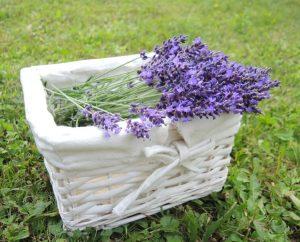Lavendel Deko (33)