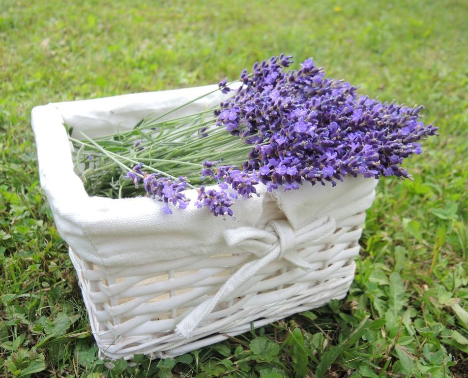 badezimmer deko lavendel