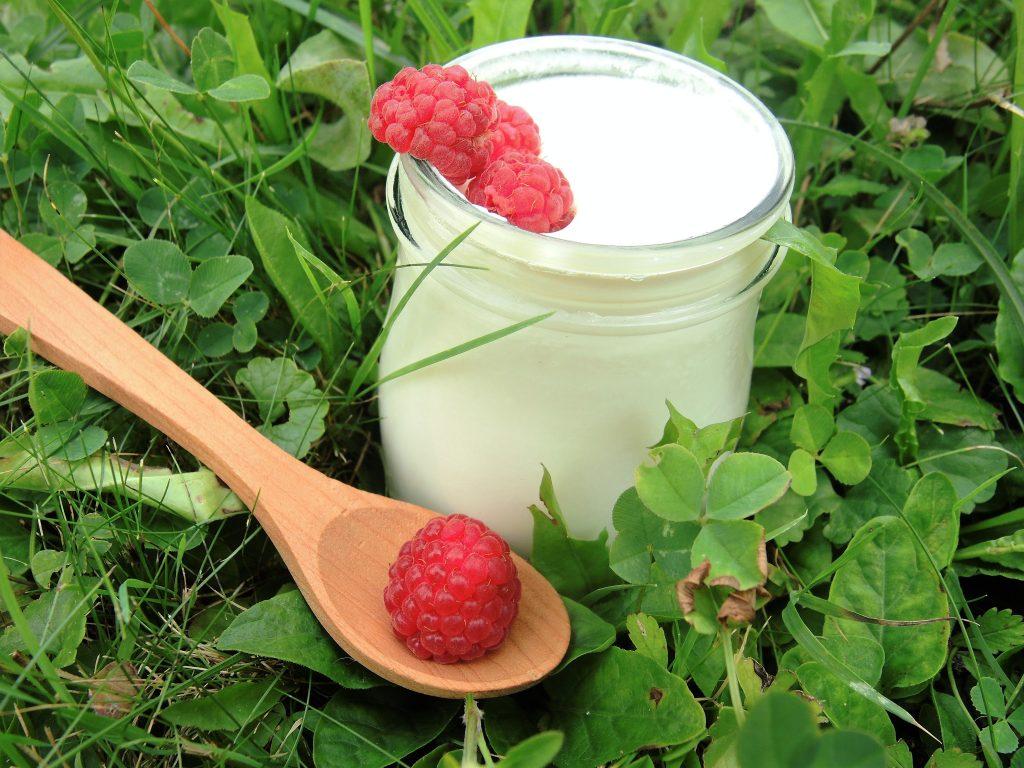 Joghurt (1)